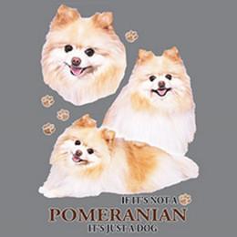 Escolha tamanho jersey on-line-Não Pomeranian Apenas Tamanho Do Cão Juventude Pequeno-6 X Grande T Shirt Pick Size jersey Imprimir t-shirt
