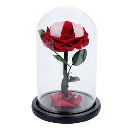 fiori rossi rosa fresca Sconti Rose Glass Cover Regalo Fiore eterno Conservato Fiore fresco Festa di San Valentino Festa Immortalità Rose rosse Decorazioni floreali