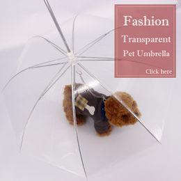 bolas de papel animal Desconto Transparente PE Pet Guarda-chuva Pequeno Cão Filhote de Cachorro Umbrella Chuva Engrenagem com o Cão Leva Mantém Pet Viagem Ao Ar Livre Pet Suprimentos
