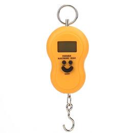 Deutschland Angelhakenwaage Elektronische Gepäck Waage LCD Display Lächelndes Gesicht Waage Waage 50kg * 10g Versorgung