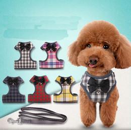 Köpek zinciri toptan çan kravat yay kedi Teddy daha Xiong Bomei Schnauzer göğüs geri köpek tasma halat cheap wholesale chain dog leash nereden toptan zincir köpek tasması tedarikçiler