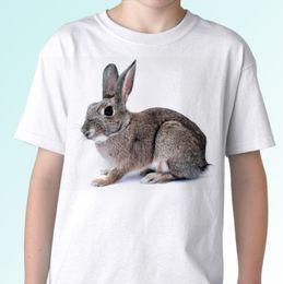 50583056030 Discount rabbit tee shirt - Grey Rabbit white t shirt bunny tee top hare  design mens