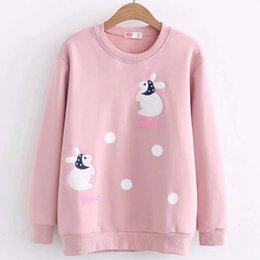e44a1852b1c embroidered sweatshirts NZ - Korean Women Harajuku Cute Cartoon Rabbit  Patch Embroidered Dot Velvet Hoodie Lady