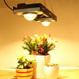 cree geführt wachsen lichter Rabatt Cree cxb3590 cob led wachsen licht volles spektrum 200 watt citizen led anlage wachsen lampe für zelt gewächshäuser hydroponische anlage