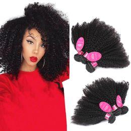 Brazialin Sınıf 8a Vizon Afro Kinky Kıvırcık Bakire Saç İnsan saç demetleri Uzantıları Örgü İnsan Saç Demetleri afro kinky kıvırcık Çift Atkı ga nereden