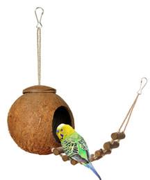Hideaway natural do coco de Niteangel 100% com a escada, o pássaro e o brinquedo pequeno do animal de Fornecedores de brinquedos pequenos para animais pequenos