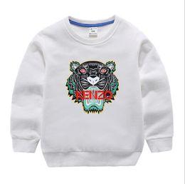 Novo clássico Designer de Luxo 2-12 anos de T-shirt do bebê casaco jacekt camisola hoodle olde Terno Crianças Conjuntos de Roupas de Algodão Crianças SWEATER obrftr cheap classic suits de Fornecedores de ternos clássicos
