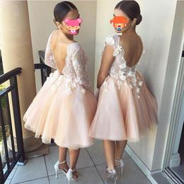 robe demoiselle d'honneur Платья для подружек невесты на свадьбу Коралловые платья подружки невесты V-образным вырезом Середина икры Длина vestidos largos от