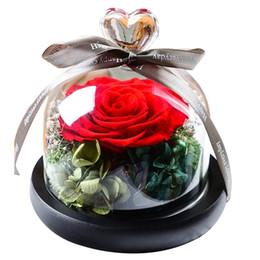 Rose-Baer-Kultur-Blume-Hochzeit-Valentine-Decor-Geburtstagsgeschenk 2019