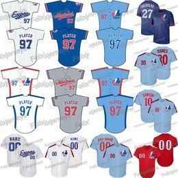 Jersey pedro martinez on-line-30 Tim Raines, Montreal, Expos, Vladimir, Guerrero, Pete, Rose, Pedro, Martinez, Gary, Carter, andre, Dawson, Stephen, Strasburg, basebol, jerseys
