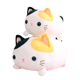 jouets en peluche de pâques en gros Promotion Vente en gros gratuit Dropshipping 35 cm 45 cm super doux chat animaux en peluche jouets en peluche Kitty oreillers décor à la maison bébé oreiller anniversaire de Pâques