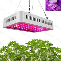 Grünes haus wachsen lichter online-LED wachsen Licht 1500W 1200W 1000W Vollspektrum LED wachsen Zelt bedeckt Gewächshäuser Lampe Pflanze wachsen Lampe für Gemüse Blüte Aluminium DHL