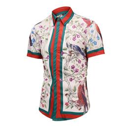 2018 Nuevo patrón Moda europea Afloje camisa de cuello de verano Estilo de manga corta Versión coreana desde fabricantes