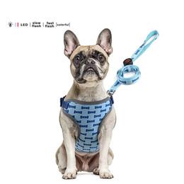 2019 ha condotto il petto del collare del cane Collari per cani Guinzaglio per cani Collari per cani Accessori per cani Collari per cani Guinzagli per animali Cinghie per pettorine Set di trazione sconti ha condotto il petto del collare del cane