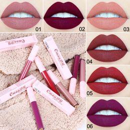 sexy dunkles make-up Rabatt Neue Dame Samt Lippentönung Fleck Lippen Make-up Rosa Tube flüssigen Lippenstift Sexy Red Dark Purple Gloss 6 Farben Batom Matte Lipgloss