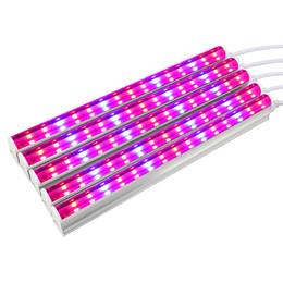 Lampada per la crescita delle piante a LED per piante 30W AC85-265V Colore rosso blu adatto per piante da fiore Coltivazione di piantine da