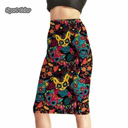 sexy hip cartoon Promo Codes - Popular Women Sexy High Waist Midi Skirts Tennis Bowling Skirts Slim Hip Cartoon Colorful Elastic S-4XL Female Party Apparel