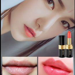 Laranja impermeável batom on-line-Lipstick Moisturizing Repairing Color Waterproof Long Lasting Non-stick Cup Blood Orange Lipstick Makeup