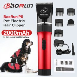 2019 kit da forbice per il cane Cane elettrico forbici P6 professionale Hair Clipper Pet Trimmer ricaricabile Cutter Scissor Grooming Kit staccabile fresa sconti kit da forbice per il cane