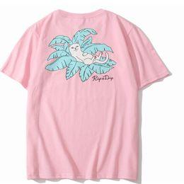 Argentina caliente: gato en la camiseta del bolsillo primavera verano deporte casual rip nip t shirt hombres mujeres estudiantes amor divertido fashon ripndip t shirt01 Suministro