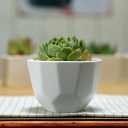 100pcs piccolo poligono di ceramica carnoso bianco semplice che cuce il vaso di fiore opaco della bocca larga SN1566 Trasporto libero da grandi vasi da fiori in ceramica fornitori