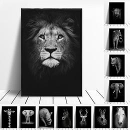 dipinti a olio d'isola Sconti Canvas Pittura Animale arte della parete del leone dell'elefante Deer Zebra Poster e Quadri Stampe parete per decorazione del salone della decorazione della casa