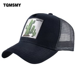 3b3060b1775 TQMSMY Summer Baseball Cap Animal Embroidery Cactus Cotton Trucker Hats For Men  Women Gorras hats Casual Caps Casquette DHXRZ