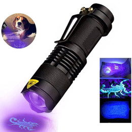 Skorpion-detektor online-LED UV-Taschenlampe ultravioletter Fackel mit Zoomfunktion Mini UV Black Light Pet Urinflecken Detektor Scorpion Jagd
