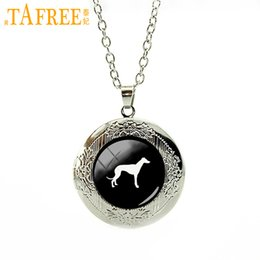 picture chains Coupons - TAFREE cute animal picture locket necklace Greyhound Dog pendant pet dog statement necklace Pleut Gift men women jewelry T413