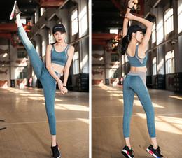 Traje de ropa de yoga 2019new ropa de fitness sujetador deportivo a prueba de golpes medias ropa deportiva mujer desde fabricantes