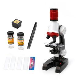 Deutschland Fasten Schiff Kinder Kunststoff LED 1200X Zoom Biologie Mikroskop Lernen Bildung Spielzeug Wissenschaft Entdeckung Instrumente Für Kinder Versorgung