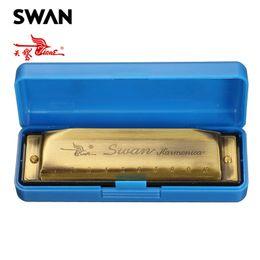 Teclas de tono bronce online-Armónica de cisne 10 hoyos 20 tonos Color bronce Clave de armónica Blues Armónica Instrumentos de música de viento clásico Arpas diatónicas