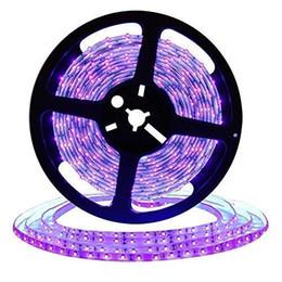 tira led 3528 blanco frio Rebajas Tira de luz negra UV LED de 16.4 pies, accesorios de luz negra flexible de 12 V con cuentas de lámpara UV de 300 unidades, luces no impermeables de 24 vatios
