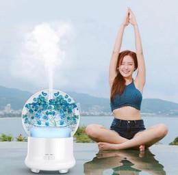 Argentina Difusor de aroma de flores frescas preservadas Difusor de aromaterapia LED Aceite esencial ultrasónico Aroma Mist Maker Humidificador de aire LJJK1520 Suministro