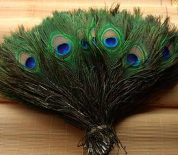 Elegantes materiales decorativos Real Natural Peacock Feather Hermosas Plumas de 25 a 30 cm de envío gratis desde fabricantes