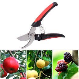 escolhendo uvas Desconto Tesoura de Jardim Ferramenta de Enxertia De Alta Resistência de Aço Inoxidável Poda de Frutas Poda Tesoura de Jardim Planta Secateurs Ferramentas de Poda Fácil