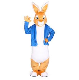 Costume complet de mascotte de lapin en Ligne-Lapin Peter costumes mascotte Noël mascottes unisexes costume élégante robe pour adultes tenue complète Hallween Pourim Evening