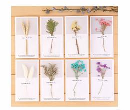 Argentina Año nuevo creativo hecho a mano tarjeta pequeña tarjeta de felicitación de flores secas cumpleaños de alta calidad tarjeta pequeña 2019 estilo chino simple Primavera Suministro