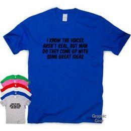 Ich weiß, dass die Stimmen nicht die Sloganspitze der wirklichen lustigen T-Shirt Spaßmänner Geschenkfrauen sind von Fabrikanten