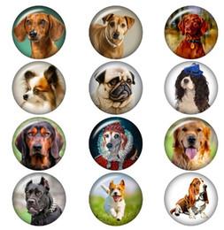 Button 30PCS / LOT Love Dog Snap fascini cabochon in vetro Ginger Snap Button fascino per i monili di 18MM Bracciale da
