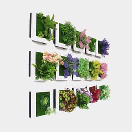 Argentina Planta de simulación Marco de fotos 49 Diseños Colgantes de pared 3D Flores artificiales Sala creativa Oficina Imagen de pared Decoración 1 unidades ePacket Suministro