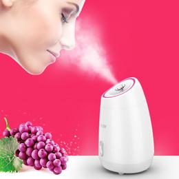 2019 spray de vegetais Frutas Vegetais Rosto Facial Steamer Household Spa Beleza Instrumento Nano Spray de Água Medidor Rosto Umidificação Ferramenta de Beleza desconto spray de vegetais