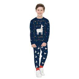 2019 usura del ragazzo americano Costumi di Natale Maglioni Stili europei e americani Nuovi pullover per ragazzi e ragazze Abbigliamento per bambini Stampa digitale 3D Manica lunga a due pezzi usura del ragazzo americano economici