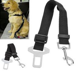 Cintura di sicurezza per cani regolabile Cintura di sicurezza in nylon per animali domestici Cintura di sicurezza Cinture per cani Cintura di sicurezza Pet Supplies supplier puppies belt da cintura cuccioli fornitori
