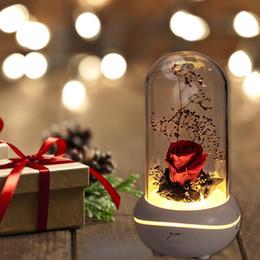 Luzes da noite rosa vermelha on-line-Rose Em Flask Noite Lamp Luminaria Lampara Rosa vermelha com Led Light In Presente do dia de Vidro Wedding Party Para Dome Mãe