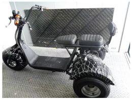 Tricycle à moteur électrique en Ligne-Batterie tricycle électrique trois roues de la maison Batterie de scooter détachable Puissance du moteur 1000 (w) Vitesse maximale 50 (km / h)