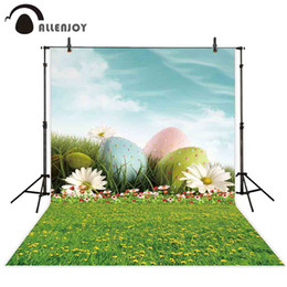 hoto Studio-Hintergründe Allenjoy Osterfotografie Hintergrund Frühlingsblume Ei Himmel grün Gras Hintergrund Fotostudio Fototelefon Fot ... von Fabrikanten