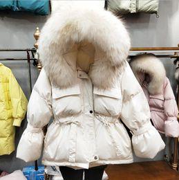 2019 koreanische pelz kapuzenjacke 2019 Winter Frauen Daunenjacke mit Kapuze femme Mantel Waschbären Pelzkragen Korean Fashion Short Warm Ente Daunenjacken Oberbekleidung p1364 günstig koreanische pelz kapuzenjacke