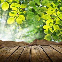 2019 girasoles de vinilo Laeacco Fondos fotográficos Primavera Árbol verde Hojas Tablero de madera Lunares brillantes Foto Telones Fotoco Estudio fotográfico