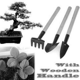 pianta piccoli giardini Sconti Piccolo set 3pcs giardino strumento strumento di giardinaggio strumento rastrello vanga pala rastrello manico in legno kit di attrezzi da giardino